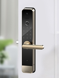 Video Door Lock
